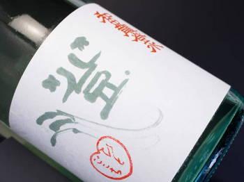 和田龍登水 ひやおろし  by Sake芯